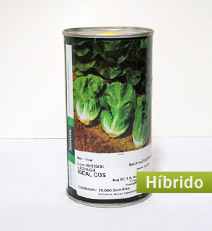 lechuga-ideal-cost-hibrida